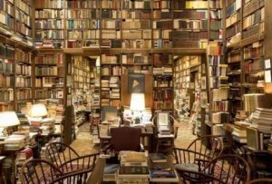 eco-carier-biblioteca