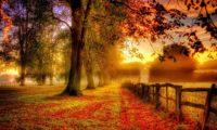 Диляна Велева – Септември е граница. Ново начало