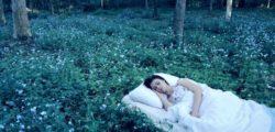 Тълкуване на сънищата в психологията според Пиер Дако