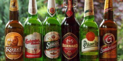 Чешки учени – редовната консумация на бира е изключително вредна