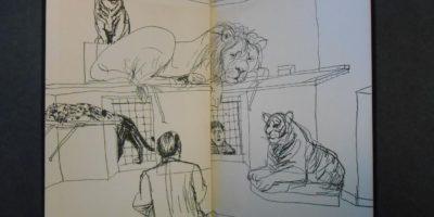 """Уилям Сароян : """"Тигърът на Трейси"""". Едно забележително литературно произведение"""