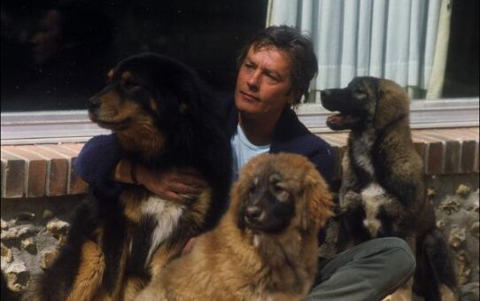 Ален Делон и неговата предана любов към животните